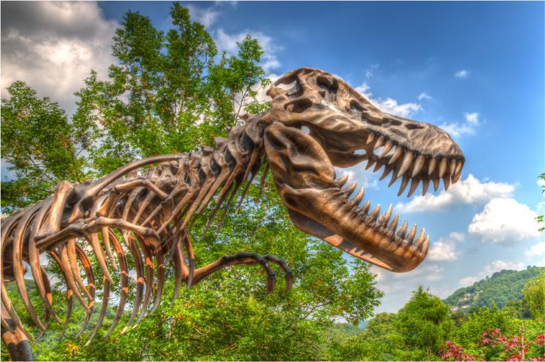 Experience Downtown Salt Lake and the Dinosaur Park